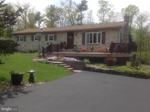 417 Mohave Drive, AUBURN, PA 17922 (#PASK130436) :: Ramus Realty Group
