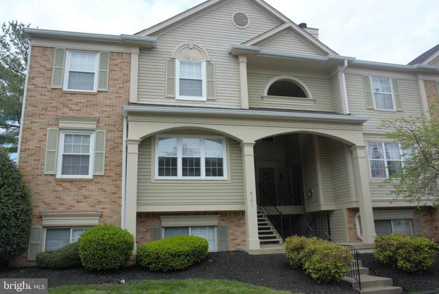 8151 Bayonet Way #203, MANASSAS, VA 20109 (#VAPW493516) :: The Licata Group/Keller Williams Realty