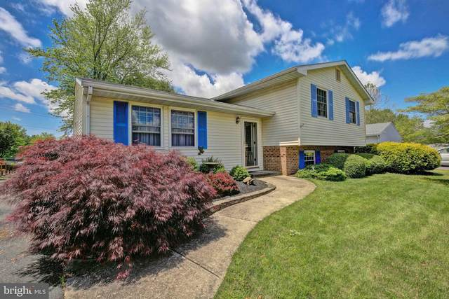 29373 Will Street, EASTON, MD 21601 (#MDTA138032) :: The Gus Anthony Team