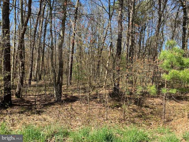 0 Lot# C41 Vilno Drive, LEHIGHTON, PA 18235 (#PACC116046) :: The Team Sordelet Realty Group