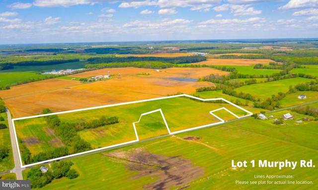 Lot 1 Murphy Road, CENTREVILLE, MD 21617 (#MDQA143830) :: Pearson Smith Realty