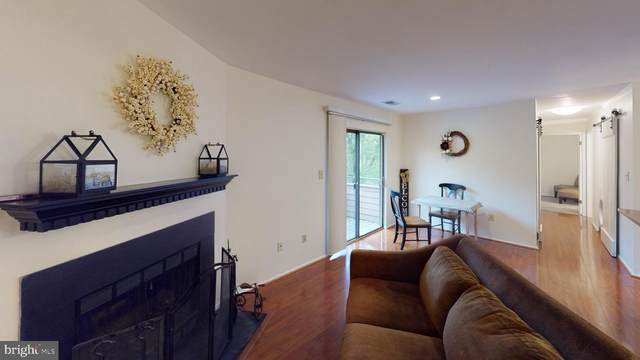 5364 Smooth Meadow Way #9, COLUMBIA, MD 21044 (#MDHW279448) :: Ultimate Selling Team