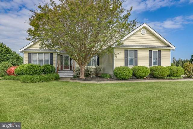 178 Clemencia Road, EARLEVILLE, MD 21919 (#MDCC169396) :: The Allison Stine Team
