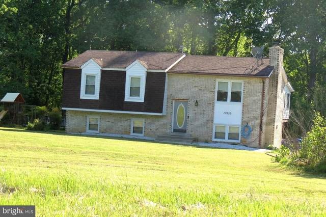 10955 Mattingly Road, LA PLATA, MD 20646 (#MDCH213812) :: The Maryland Group of Long & Foster Real Estate