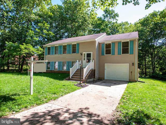 6055 Misty Arch Run, COLUMBIA, MD 21044 (#MDHW279660) :: RE/MAX Advantage Realty