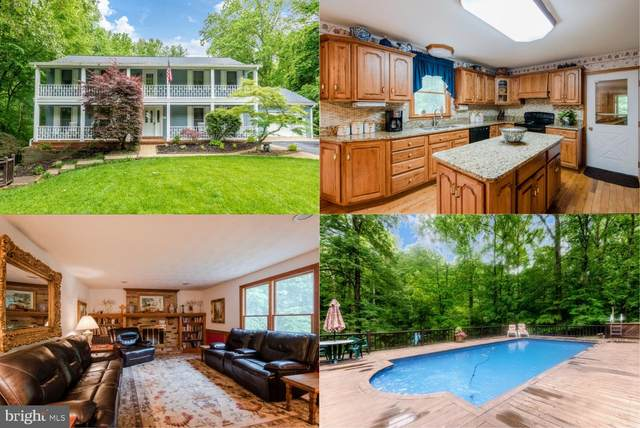 5455 Well Spring Court, LA PLATA, MD 20646 (#MDCH213980) :: Bob Lucido Team of Keller Williams Integrity