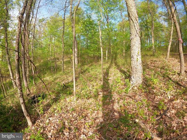 Lot 22 Quail Hill Drive, HIGH VIEW, WV 26808 (#WVHS114168) :: Pearson Smith Realty