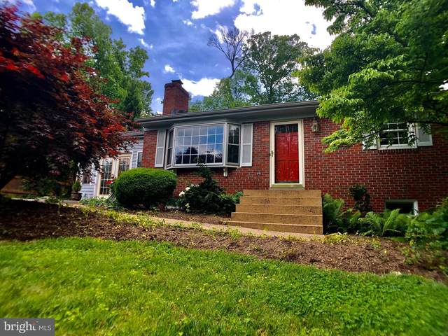588 Curry Springs Place, HAMILTON, VA 20158 (#VALO411876) :: LoCoMusings