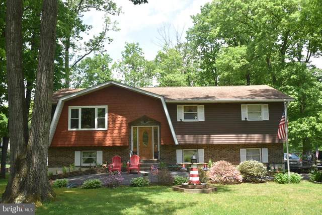 1805 Crazy Horse Drive, AUBURN, PA 17922 (#PASK130756) :: Ramus Realty Group