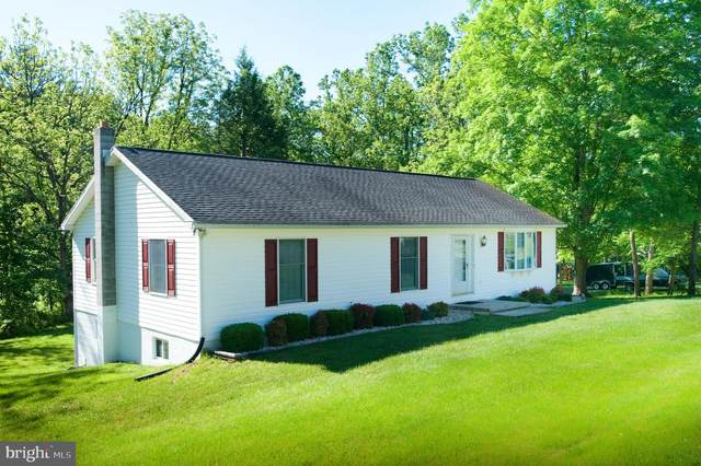 12316 Shadoe Hollow Road NE, CUMBERLAND, MD 21502 (#MDAL134332) :: The MD Home Team