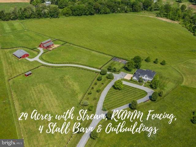 37986 Kite Lane, LOVETTSVILLE, VA 20180 (#VALO412098) :: Pearson Smith Realty