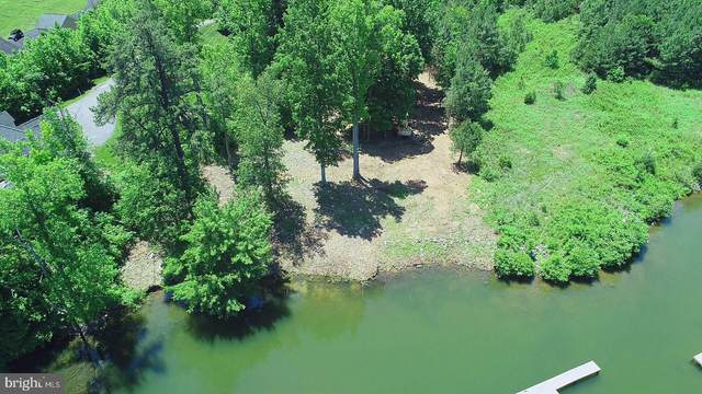 Lake Forest Dr, MINERAL, VA 23117 (#VALA121312) :: Pearson Smith Realty