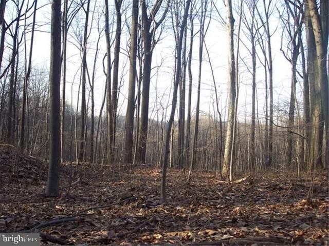 6610 Barbara Lot 23, ALBURTIS, PA 18011 (#PABK358388) :: Iron Valley Real Estate