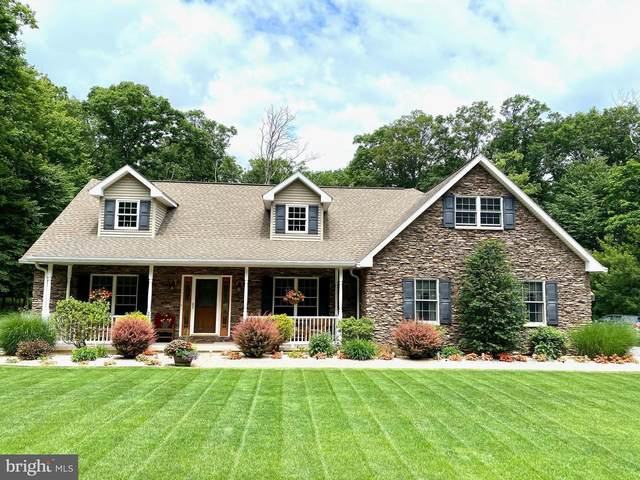 210 Cove Mt Drive N, ZION GROVE, PA 17985 (#PASK130942) :: TeamPete Realty Services, Inc