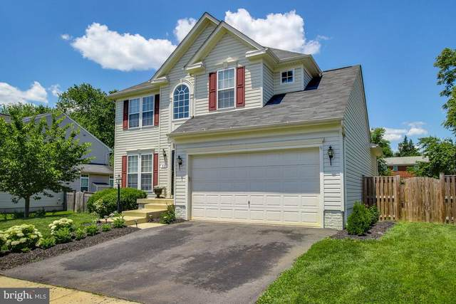 55 Potterfield Drive, LOVETTSVILLE, VA 20180 (#VALO413140) :: Arlington Realty, Inc.