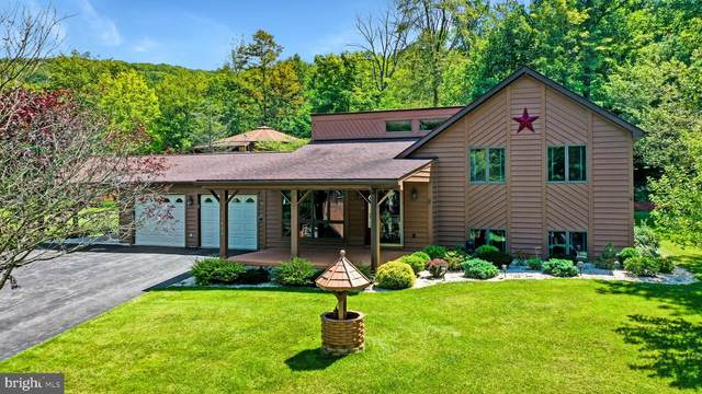 11804 Cypress Court, FROSTBURG, MD 21532 (#MDAL134448) :: Pearson Smith Realty