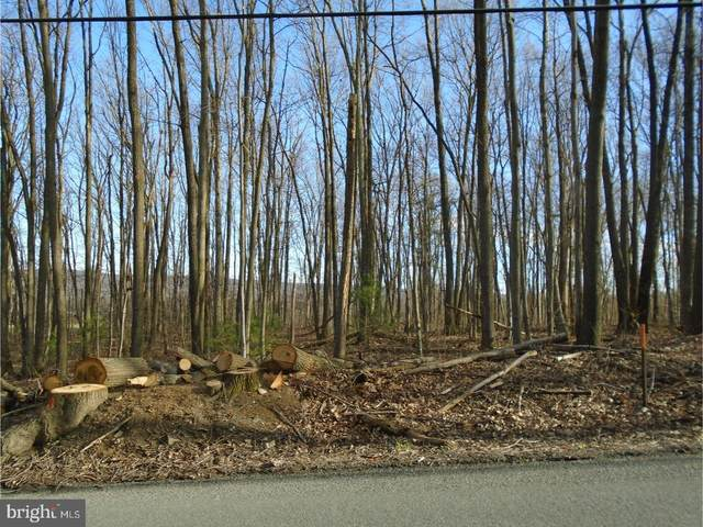 Lot #3 Luckenbill Road, SCHUYLKILL HAVEN, PA 17972 (#PASK131078) :: The Joy Daniels Real Estate Group