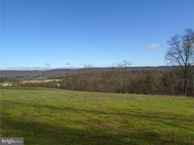 Lot #9 Luckenbill Road, SCHUYLKILL HAVEN, PA 17972 (#PASK131082) :: Blackwell Real Estate