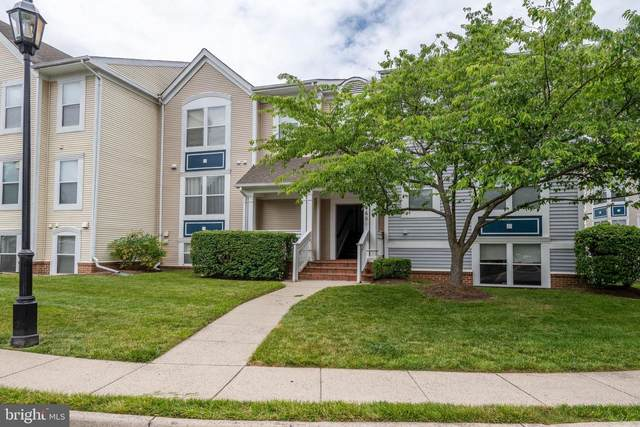 20601 Cornstalk Terrace #302, ASHBURN, VA 20147 (#VALO413748) :: Crossman & Co. Real Estate