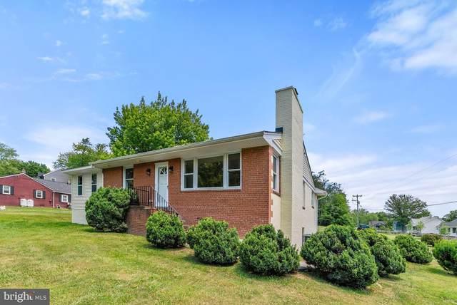 35090 Snake Hill, MIDDLEBURG, VA 20117 (#VALO413856) :: Talbot Greenya Group