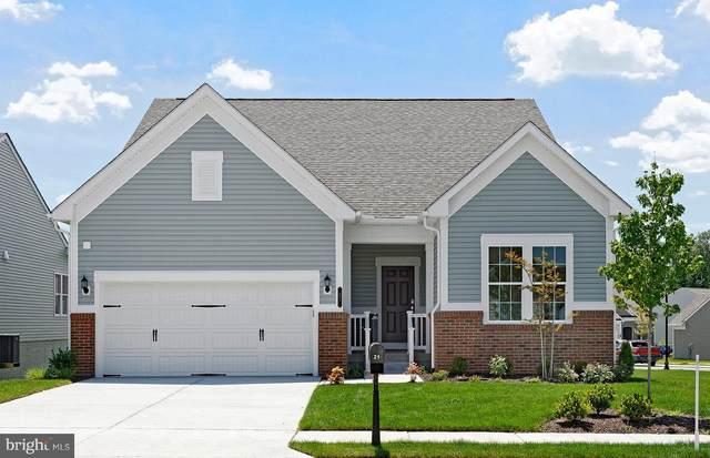 11 Mcquarie Drive #06, FREDERICKSBURG, VA 22406 (#VAST223110) :: Coleman & Associates