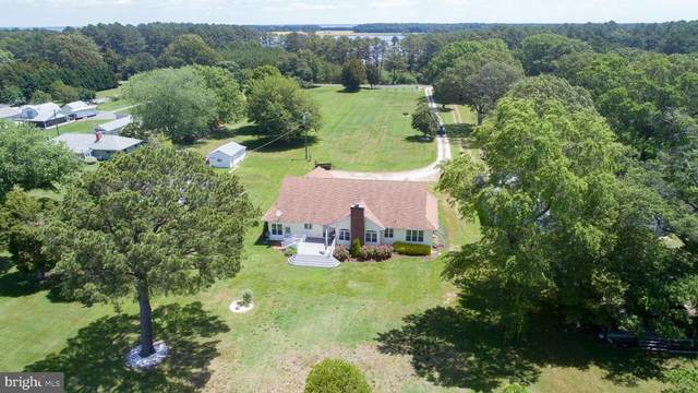6124 Twin Point Cove Road, CAMBRIDGE, MD 21613 (#MDDO125606) :: AJ Team Realty