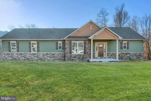 131 Stone Arch Drive, MARYSVILLE, PA 17053 (#PAPY102286) :: The Joy Daniels Real Estate Group