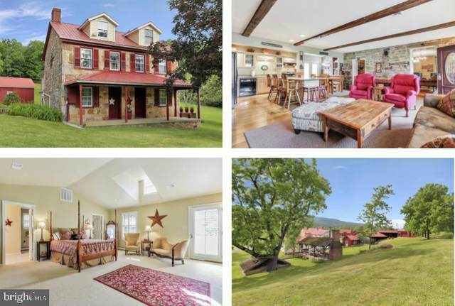 7160 Little Cove Road, MERCERSBURG, PA 17236 (#PAFL173524) :: AJ Team Realty