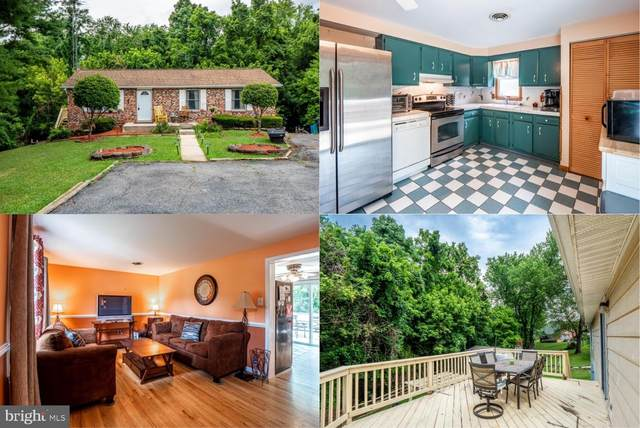820 6TH Avenue, BRUNSWICK, MD 21716 (#MDFR266590) :: The Redux Group