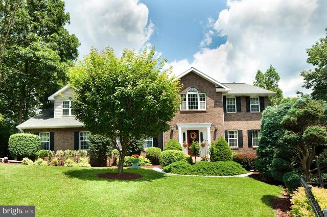14501 Viewcrest Road SW, CRESAPTOWN, MD 21502 (#MDAL134618) :: Keller Williams Flagship of Maryland