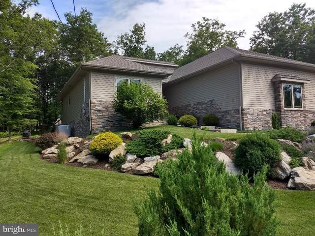 20 Point Of Woods, HAZLETON, PA 18202 (#PASK131312) :: TeamPete Realty Services, Inc