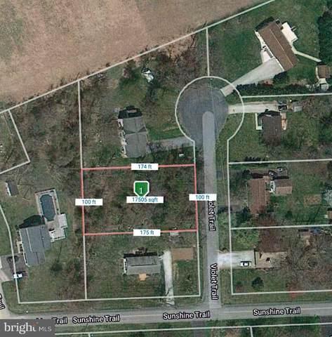 3 Violet Trail, FAIRFIELD, PA 17320 (#PAAD112190) :: LoCoMusings
