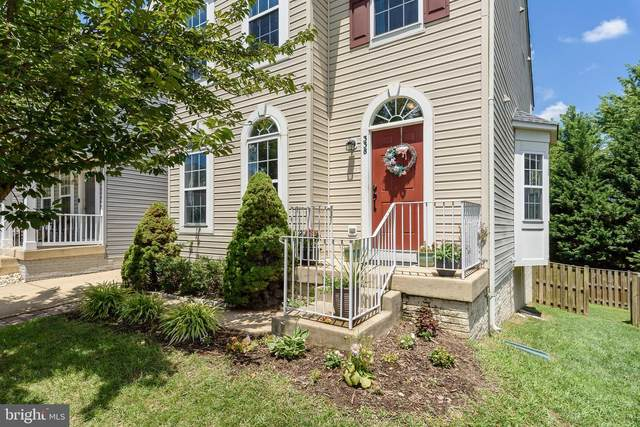 338 Ebaugh Drive SE, LEESBURG, VA 20175 (#VALO415760) :: The Vashist Group