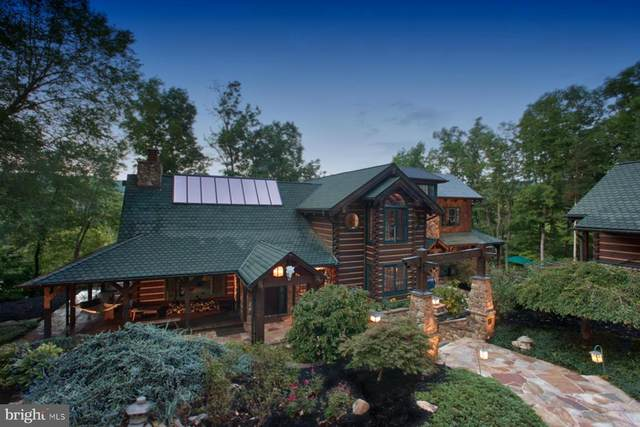 1737 Artz Road, WOODSTOCK, VA 22664 (#VASH119678) :: John Lesniewski | RE/MAX United Real Estate