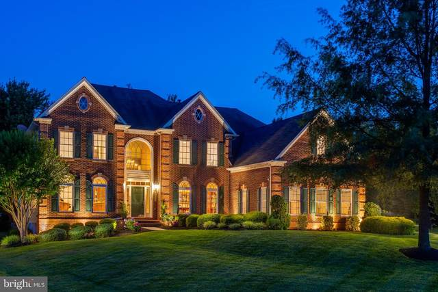 43013 Lago Stella Place, ASHBURN, VA 20148 (#VALO415858) :: Talbot Greenya Group