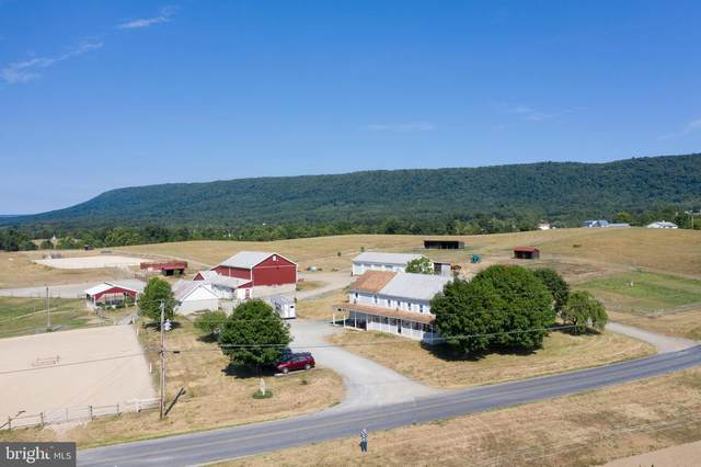 762 Grahams Wood Road, NEWVILLE, PA 17241 (#PACB125958) :: The Joy Daniels Real Estate Group