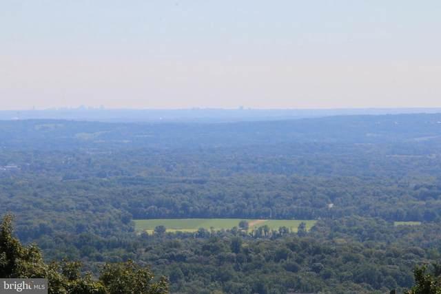 Mountain Orchard Lane, ROUND HILL, VA 20141 (#VALO416894) :: EXP Realty