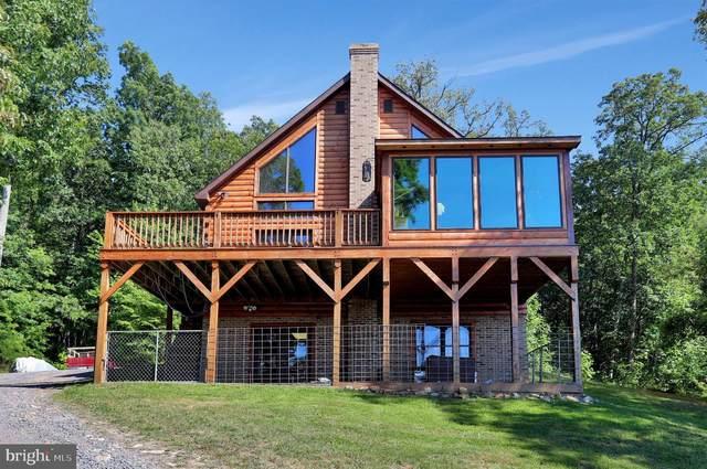 856 Granstaff Lane, EDINBURG, VA 22824 (#VASH119824) :: Blackwell Real Estate