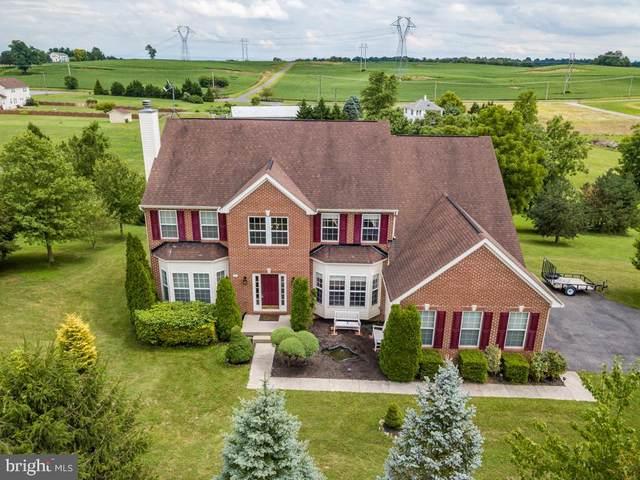 137 Bronze Manor Court, WINCHESTER, VA 22603 (#VAFV158764) :: Dart Homes