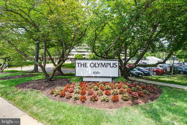 6301 Stevenson Avenue #107, ALEXANDRIA, VA 22304 (#VAAX248910) :: The Riffle Group of Keller Williams Select Realtors
