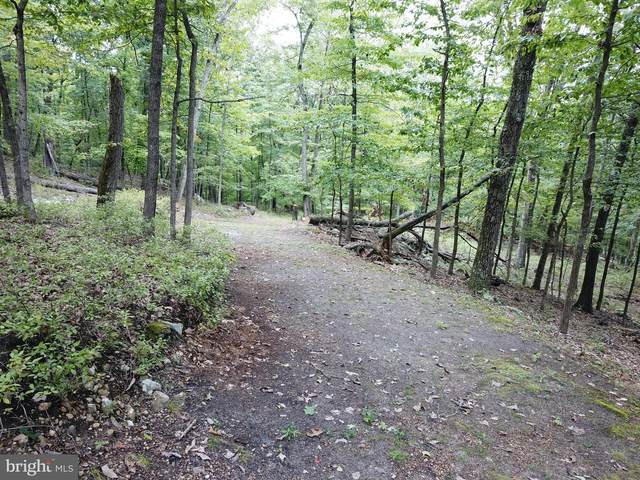 Lot #4 Sycamore Drive, CAPON BRIDGE, WV 26711 (#WVHS114430) :: SP Home Team