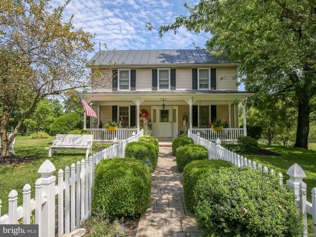 202 Babbs Mountain Road, WINCHESTER, VA 22603 (#VAFV158858) :: Dart Homes
