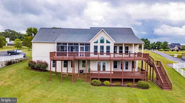 6800 Lake Pointe Drive, MINERAL, VA 23117 (#VASP223950) :: Pearson Smith Realty