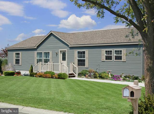 72 Westview Terrace, WOMELSDORF, PA 19567 (#PABK361644) :: The Dailey Group