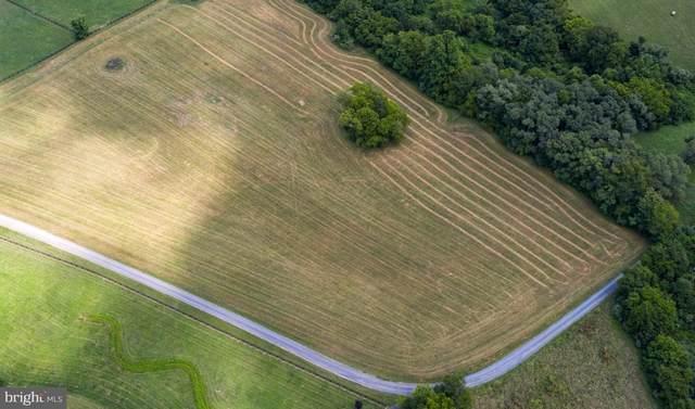 Lot 2B Spring Creek Drive, CULPEPER, VA 22701 (#VACU142158) :: Pearson Smith Realty