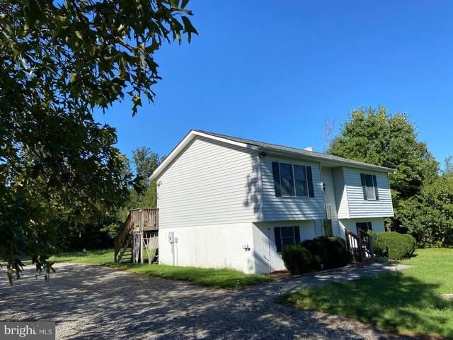 5334 Dickerson Road, PARTLOW, VA 22534 (#VASP224040) :: Pearson Smith Realty