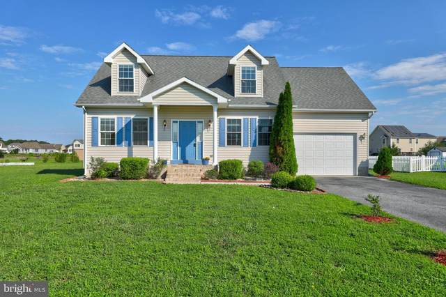 183 Nina Lane, FRUITLAND, MD 21826 (#MDWC109244) :: BayShore Group of Northrop Realty