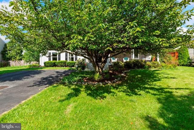 211 Killdeer Road, STEPHENS CITY, VA 22655 (#VAFV159042) :: Debbie Dogrul Associates - Long and Foster Real Estate