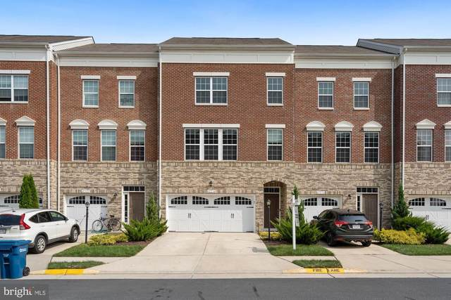 42234 Violet Mist Terrace, ASHBURN, VA 20148 (#VALO418306) :: The Putnam Group