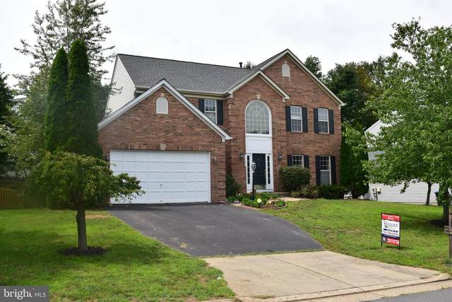 18689 Potomac Station Drive, LEESBURG, VA 20176 (#VALO418530) :: Debbie Dogrul Associates - Long and Foster Real Estate